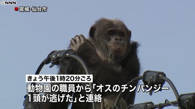 少年、院の更生施設から脱走していた…福岡刺殺事件